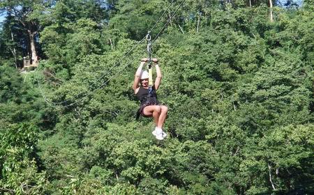Ocho Rios Jamaica - Canopy (Zip line)